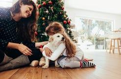 Gelukkige moeder en dochter het vieren Kerstmis met hun hond stock foto's