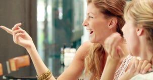 Gelukkige mooie blondevrienden die in cafetaria bespreken stock video