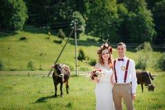 Gelukkige mooie bruid en bruidegom die op gebied in zonlicht lopen Royalty-vrije Stock Fotografie