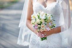 Gelukkige mooie bruid en bruidegom die op gebied in zonlicht lopen Stock Foto's