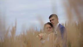 Gelukkige mooie bruid en bruidegom op gebied stock videobeelden