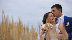 Gelukkige mooie bruid en bruidegom op gebied stock footage