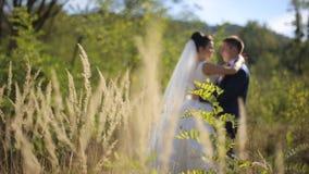 Gelukkige mooie bruid en bruidegom op het gebied stock video