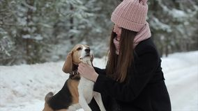 Gelukkige mooie jonge vrouw in roze hoed die een haar brakhond in een de winterdag petting Vriendschap, huisdier en mens Spontaan stock videobeelden
