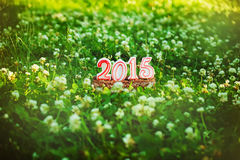 Gelukkige Nieuwe 2015 jaar op het gras in de zomerpark Royalty-vrije Stock Afbeelding