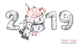 2019 Gelukkige Nieuwjaarbanner Leuk varken in de wintersjaal met aantallen De illustratie van de waterverf Symbool van de winterv Royalty-vrije Stock Foto's