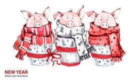 2019 Gelukkige Nieuwjaarillustratie De grens van Kerstmis 3 leuke varkens in de wintersjaals De cakes van de groetwaterverf Symbo vector illustratie