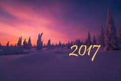 Gelukkige Nieuwjaarskaart met vuurwerk, bos en noordelijke licht Stock Foto