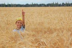 Gelukkige oogst Stock Fotografie