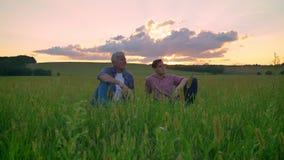 Gelukkige oude vader en zijn volwassen zoonszitting op tarwe of roggegebied en het glimlachen, mooie zonsondergang op achtergrond stock video
