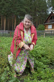 Gelukkige oude vrouw Royalty-vrije Stock Afbeeldingen