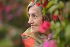 Gelukkige oudere vrouw stock afbeeldingen