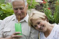 Gelukkige oudsten - 42 jaar in liefde Royalty-vrije Stock Foto