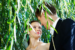 Gelukkige paar, bruid en bruidegom Royalty-vrije Stock Afbeelding