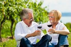 Gelukkige paar het drinken wijn bij meer in de zomer Stock Afbeelding