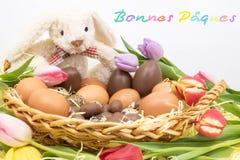 Gelukkige Pasen Bonnes Pâques is Gelukkige die Pasen in het Frans van de Paashaas wordt geschreven stock foto's