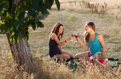 Gelukkige picknick Royalty-vrije Stock Afbeelding