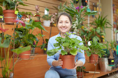 Gelukkige rijpe vrouw in bloemopslag Stock Foto