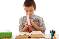 Gelukkige schooljongen met boeken Stock Foto's