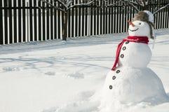 Gelukkige sneeuwman Stock Afbeeldingen