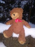 Gelukkige Teddy royalty-vrije stock foto