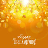 Gelukkige Thanksgiving dayachtergrond met Glanzend Stock Foto