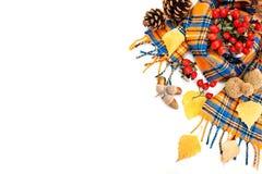 Gelukkige thanksgiving dayachtergrond Witte die achtergrond met Pompoenen, Maïs, vruchten en de herfstbladeren wordt verfraaid De royalty-vrije stock afbeeldingen