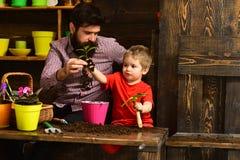 gelukkige tuinlieden met de lentebloemen Bloemzorg het water geven Grondmeststoffen Familiedag serre Gebaarde mens en royalty-vrije stock afbeelding