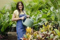 Gelukkige tuinman die de installaties water geven stock fotografie