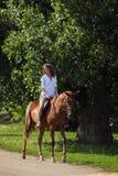 Gelukkige veedrijfster op bruin paard Royalty-vrije Stock Fotografie