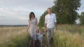 Gelukkige verhouding, ouders en jong geitjegangen op gebied stock afbeeldingen