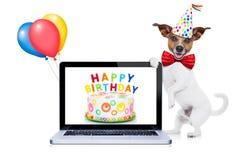Gelukkige verjaardagshond Stock Foto's