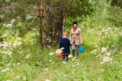 Gelukkige vijftig-jaar-oude grootmoeder en kleinzoon die in het hout in de zomer lopen Stijging in het bos stock foto's