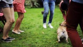 Gelukkige vrienden die bij de zomerpartij dansen in tuin stock footage