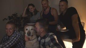 Gelukkige vrienden die met golden retriever pret het letten op komediefilm op laptop hebben bij nacht Het jonge groep mensen drin stock video