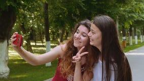 Gelukkige vrienden die selfie met smartphone in het park nemen stock footage