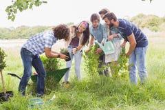 Gelukkige vrienden die voor de gemeenschap tuinieren Stock Foto's