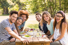 Gelukkige vrienden in het park die lunch hebben royalty-vrije stock foto