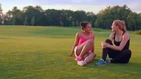 Gelukkige vrouwen die op gras in de zomerpark zitten Diverse vrienden die in openlucht spreken stock videobeelden