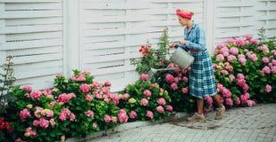 gelukkige vrouwentuinman met bloemen Bloem zorg en het water geven gronden en meststoffen Serrebloemen vrouwenzorg van royalty-vrije stock foto