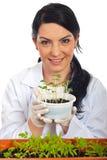 Gelukkige wetenschapper die nieuwe komkommerinstallaties houdt royalty-vrije stock foto