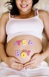 Gelukkige Zwangere Vrouw Stock Afbeeldingen