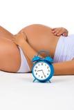 Gelukkige zwangerschap Zwangere buik met wekker Spoedig geboorte Foetale ontwikkeling tegen maanden stock afbeelding