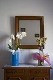 gelukwens met orchideeën Stock Foto