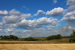 Gemähtes Weizen-Feld Lizenzfreie Stockfotos