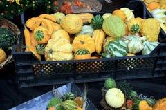 Gemüseüberfluß Stockbild