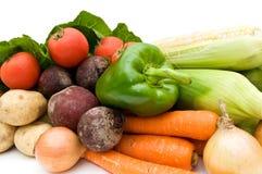 Gemüse. Stockfotos