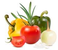 Gemüse. vektor abbildung