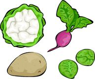 Gemüse lizenzfreie abbildung
