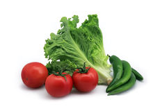 Gemüse vektor abbildung